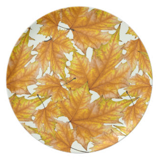 Autumn maple leaves party plates