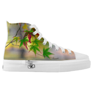 autumn maple tree leaf nature abstract detail back high tops
