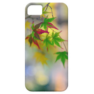 autumn maple tree leaf nature abstract detail back iPhone 5 cases