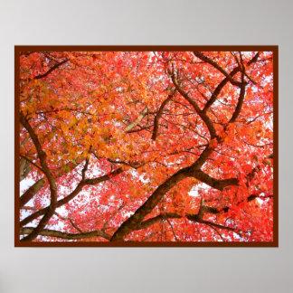 Autumn Maple Trees Print Landscape Poster