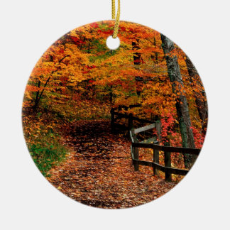 Autumn Mccormick Creek State Park Indiana Christmas Ornament