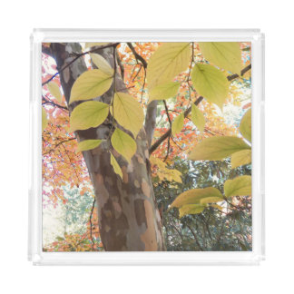 Autumn Moment Floral Acrylic Tray
