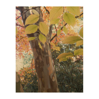 Autumn Moment Floral Wood Wall Art