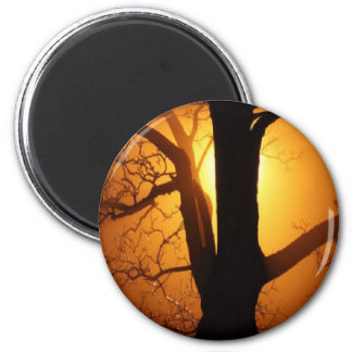 Autumn Moon Shining Through the Tree 6 Cm Round Magnet