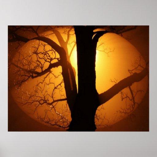Autumn Moon Shining Through the Tree Print