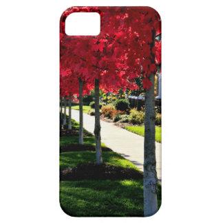 Autumn Morning iphone 5 Case