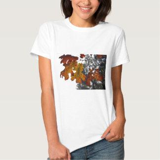 Autumn Oak Leaves Tee Shirts