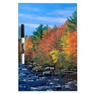 Autumn Of New England Dry-Erase Whiteboards