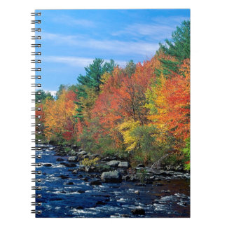 Autumn Of New England Spiral Note Books