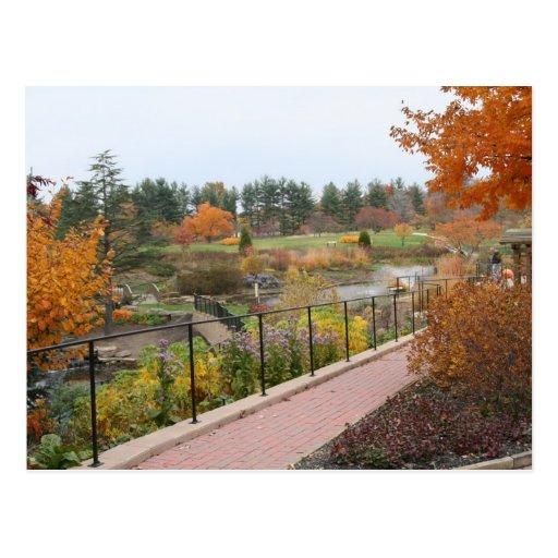 Autumn on Holden Pond Post Card