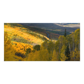 Autumn on the Grand Mesa Personalized Photo Card