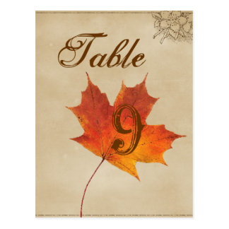 Autumn Orange Fall Leaves Wedding table numbers Postcard
