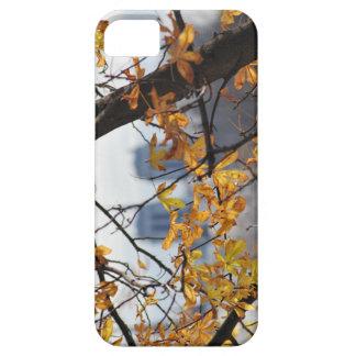 Autumn Paris Notre Dame IPHONECASE iPhone 5 Cases