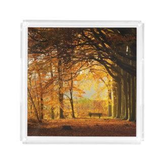Autumn park acrylic tray