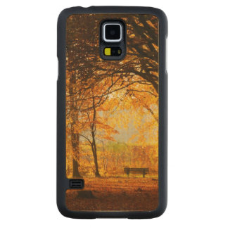 Autumn park carved maple galaxy s5 case