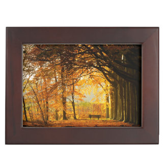 Autumn park memory boxes