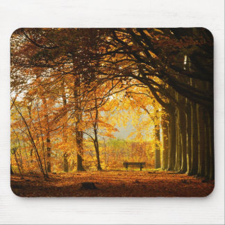 Autumn park mouse mat