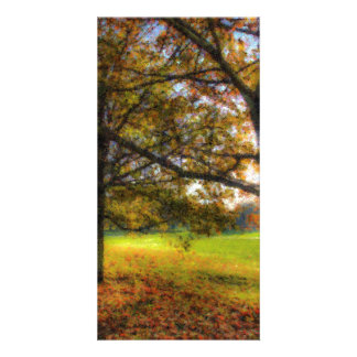 Autumn Pastel Photo Cards