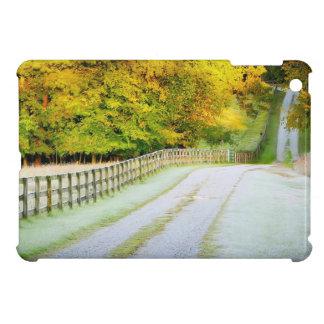 Autumn Path iPad Mini Case