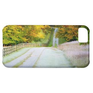 Autumn Path iphone 5 Case