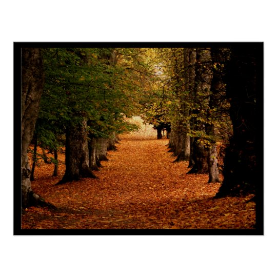 Autumn Path Poster Print