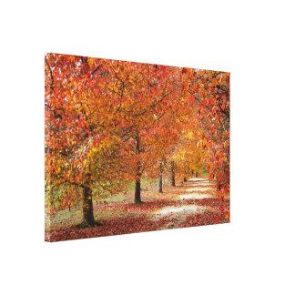 Autumn Pathway Landscape Canvas Print