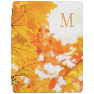 Autumn Peace iPad Cover