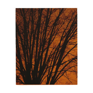 AUTUMN PERFECTION TREE AND SKY WOOD PRINT