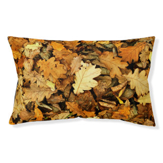 Autumn Pet Bed