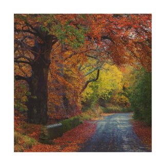Autumn Picture Wood Print