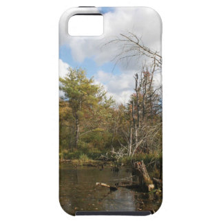 AUTUMN POND SCENE CASE FOR THE iPhone 5