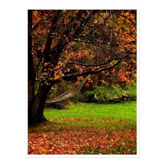 Autumn Postcard 4