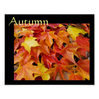 Autumn poster art prints Fall Art Colorful Leaves