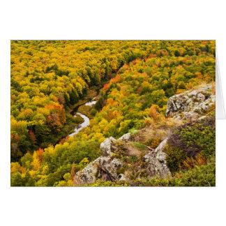 Autumn Precipice Cards
