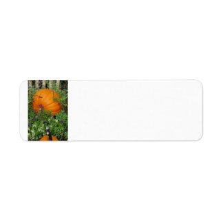 Autumn Pumpkin garden Address Label