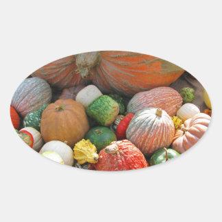 Autumn Pumpkin Harvest Oval Sticker