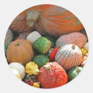 Autumn Pumpkin Harvest Round Sticker