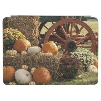 Autumn Pumpkins And Mum Display iPad Air Cover