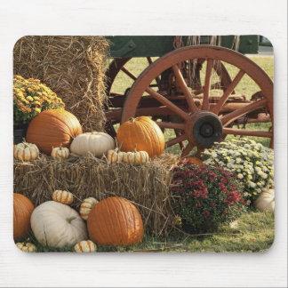 Autumn Pumpkins And Mum Display Mouse Mat
