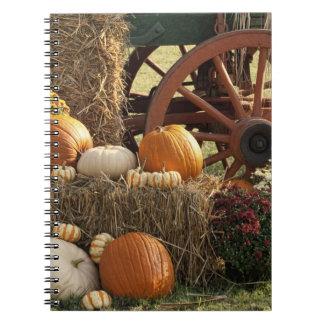 Autumn Pumpkins And Mum Display Notebooks