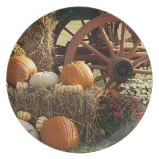 Autumn Pumpkins And Mum Display Plate