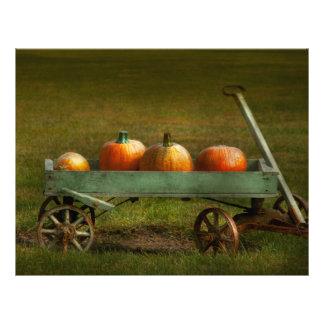 Autumn - Pumpkins - Free ride Flyers
