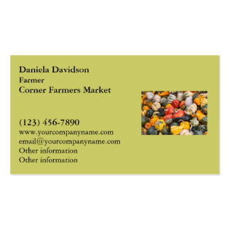 Autumn Pumpkins, Gourds and Squashes Pack Of Standard Business Cards