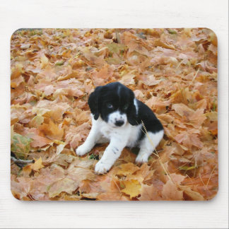 Autumn Puppy Mouse Pads
