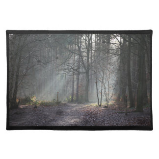 Autumn Rays Placemat