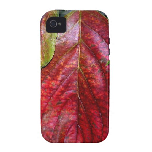 Autumn Red Dogwood Leaf Case-Mate iPhone 4 Covers