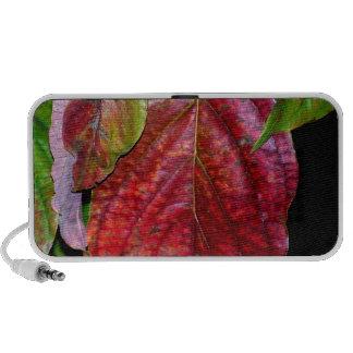 Autumn Red Dogwood Leaf iPod Speakers
