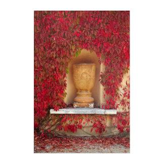 Autumn red foliage, New Zealand Acrylic Print