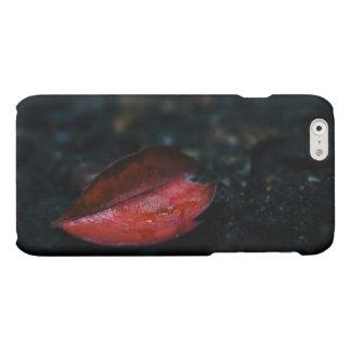 Autumn Red Leaf iPhone 6 Plus Case