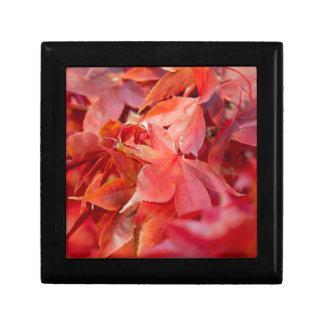 Autumn Red Maple Leaves Trinket Box